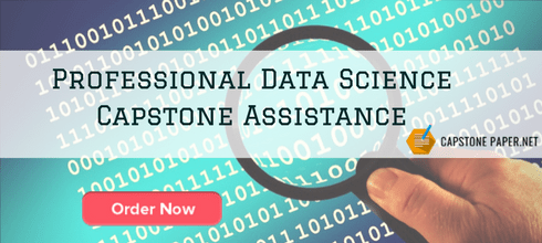 professional data science capstone assistance